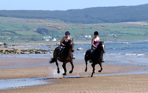 Cairnhouse Stables, Blackwaterfoot, Isle of Arran